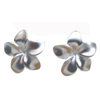 Ohrstecker,Silber, Blüte ca. 20 x 20 mm
